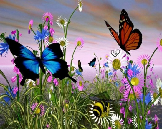 butterflies-art-colors-animals-birds-and-bugs-creature-butterflies-b-MOTYLE-butterfly-Nature-Flowers-my-album-DEB-Girlie-kids-and-landscapes-Art-3D-favorites-bellas_large