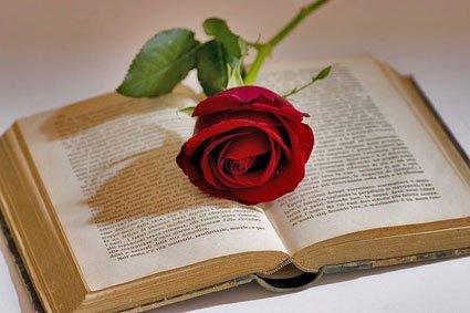 libro-y-rosa